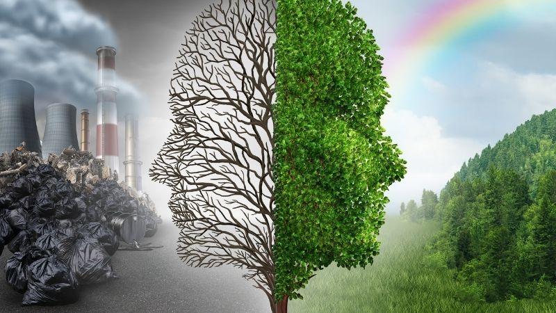良い環境と悪い環境の対比