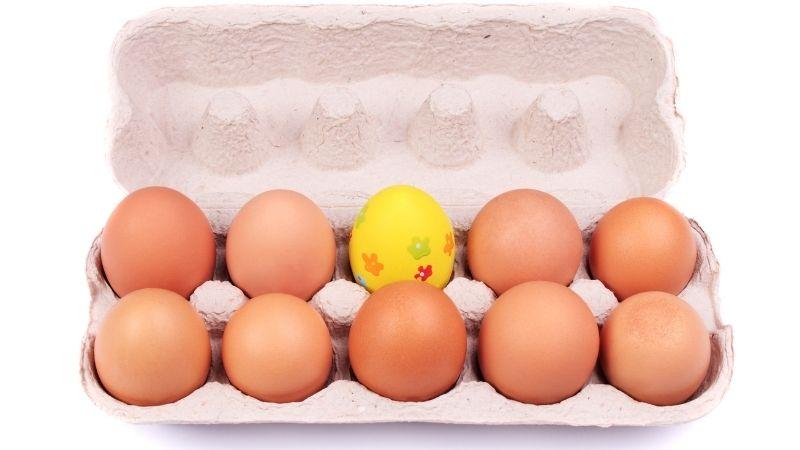 1つだけ卵の色がちがう